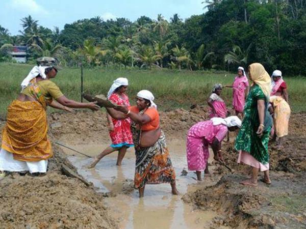 പാലക്കാട് ജില്ലയില് 112 ജല സംരക്ഷണ പ്രവൃത്തികള്ക്ക് തുടക്കം